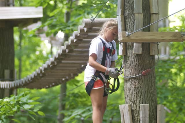 Adventure Park in Bridgeport will donate to the Arbor Day Foundation during a 3-day event Friday through Sunday.