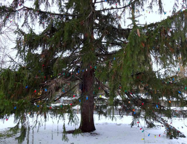 Bronxville will open the holiday season Friday, Dec. 4, with its annual tree-lighting ceremony at Leonard Morange Park.
