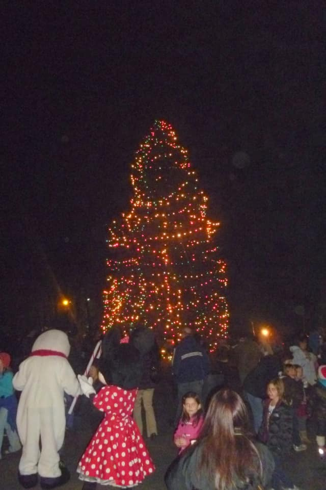 A previous year's tree lighting in Lewisboro.