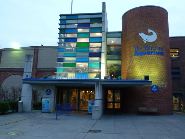 The Maritime Aquarium in Norwalk is offering decreased price for parking.