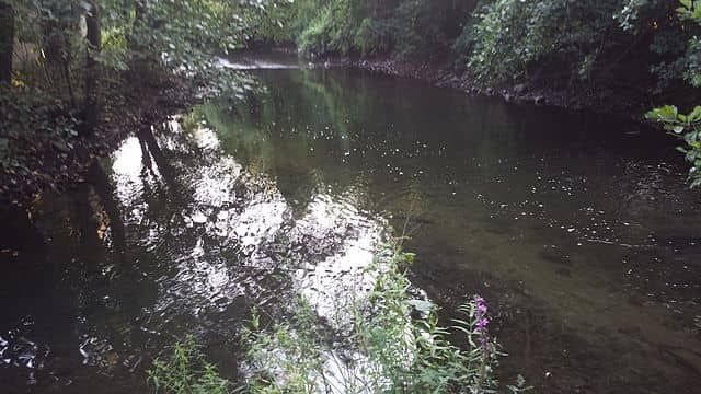 """The Saw Mill River is just one of the bodies of water identified as an """"inland waterway."""""""