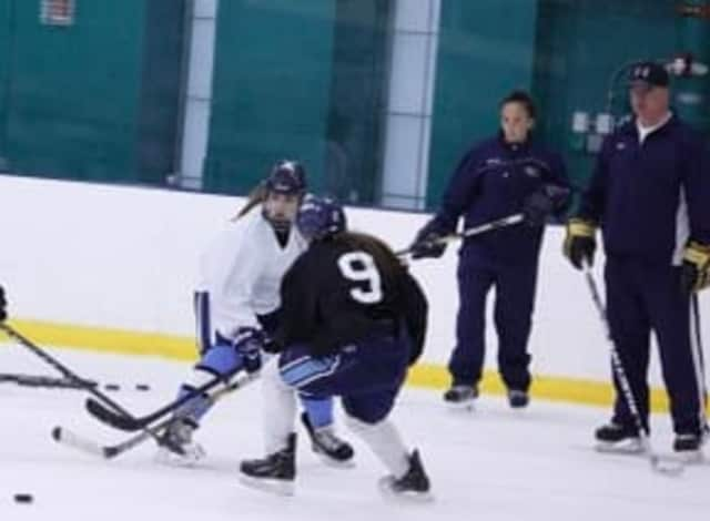 The Connecticut Whale will be a part of the inaugural season of the NWHL.