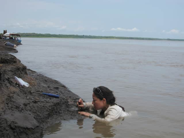 Ana Balcarcel collecting mammal fossils from Peruvian Amazon.