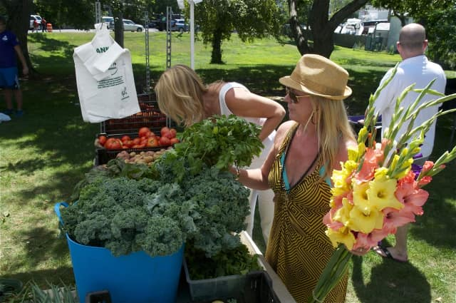 The Rowayton Farmers Market is one way to have fun in the summer in Norwalk.
