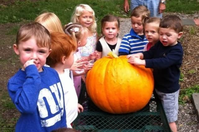 The Great Pumpkin Weigh-Off is held in Ballard Park in Ridgefield.