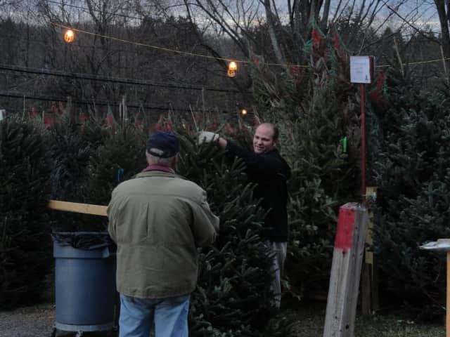 Purchase a Christmas tree this weekend at United Methodist Church in Pleasantville.