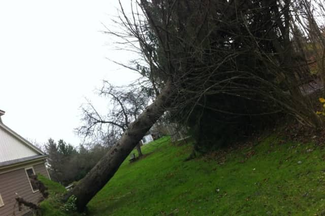 Starting in late October, Mount Kisco was hit with the one-two punch of Hurricane Sandy and a powerful Nor'easter.