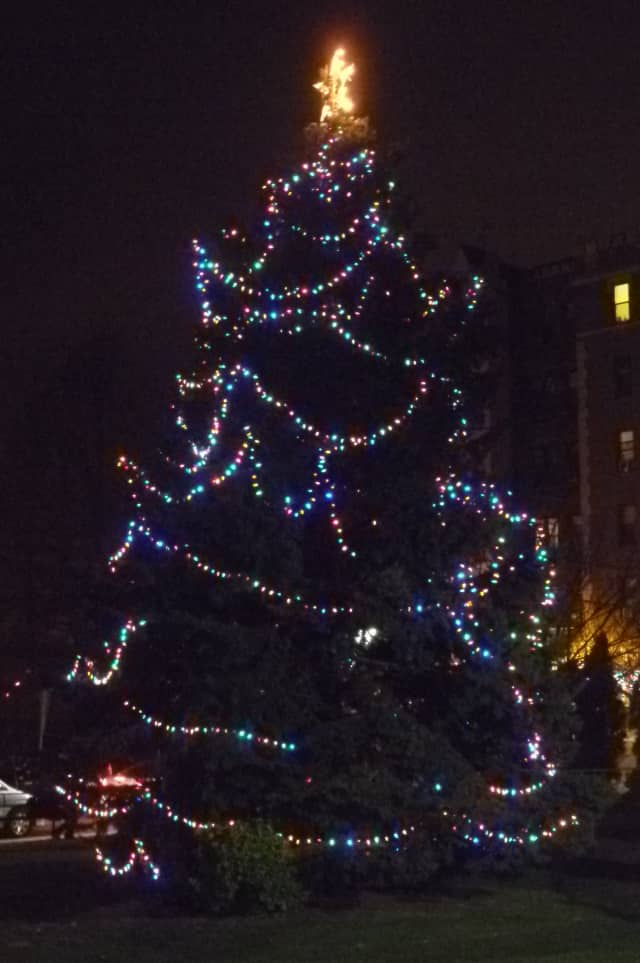 The lighting of the Christmas tree in Ma Riis Park will be part of the festivities during Harrison's Holiday Happening on Dec. 5.