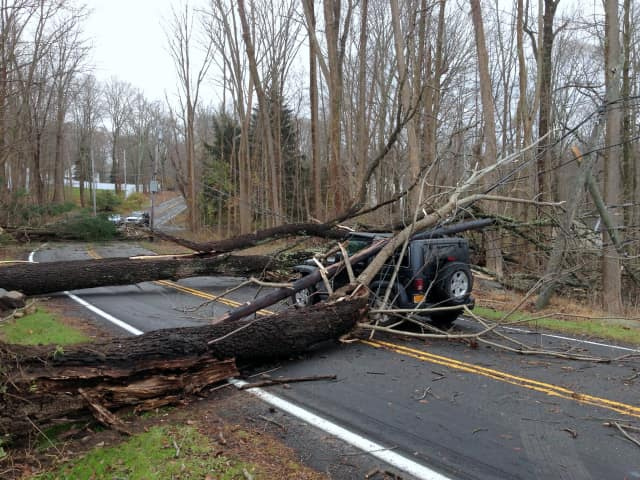 The wrath of Hurricane Sandy was one of Pound Ridge's Top 10 stories in 2012.