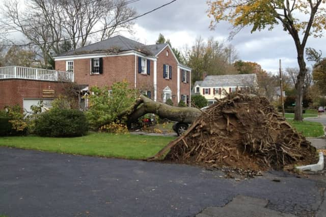 Scarsdale residents were plagued by issues following Hurricane Sandy for weeks.