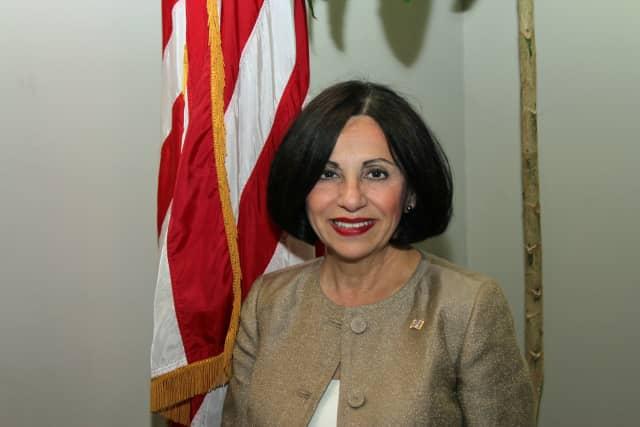 State Sen. Toni Boucher is sharply criticizing a proposed tax on Connecticut motorists.