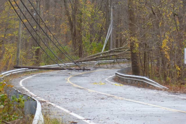 Trees and power lines were down throughout Wilton after Hurricane Sandy hit the town. Many residents were without power for  more than a week.