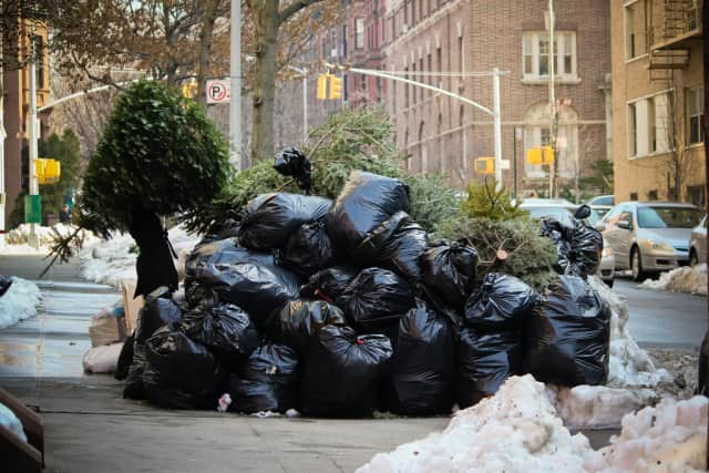 Bronxville residents can leave their trees by the curb for sanitation pickup.