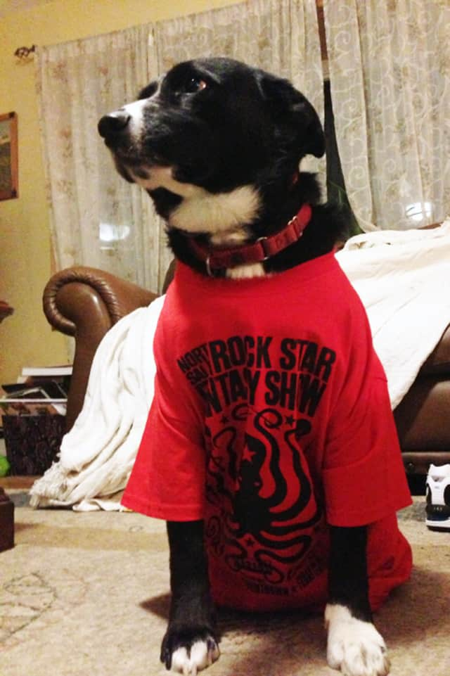North Salem's Rock Star Fantasy Show takes place Friday night.