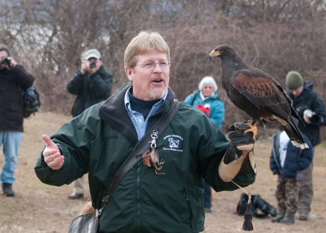 Eaglefest comes Saturday to Croton Point Park.