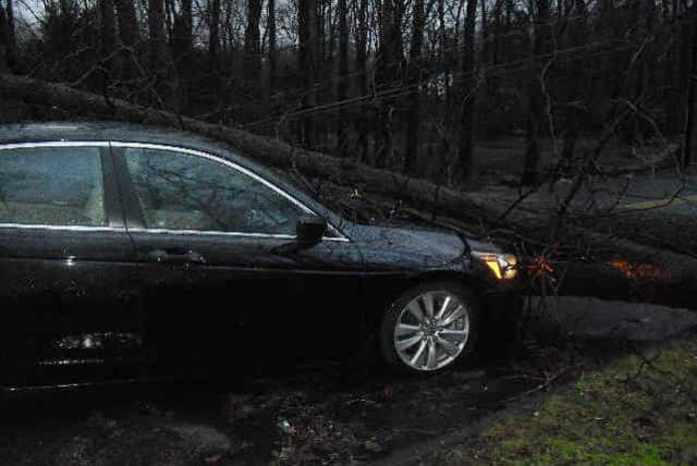 Wilton Police charged Elizabeth Ambargis, 49, of Wilton, with failing to stop for a road sign. Police said Ambargis passed a road barricade and caution tape before hitting the tree.