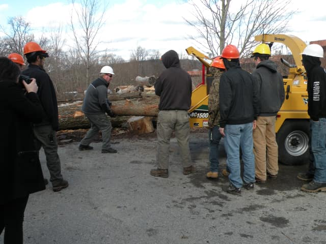 Urban forestry teacher John Madden puts a tree — a casualty of last week's storm — into the chipper as students assist at the Putnam/Northern Westchester BOCES Tech Center in Yorktown.