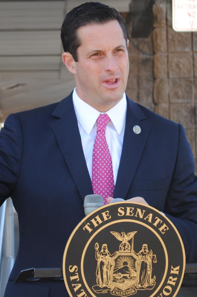 """State Sen. Greg Ball has canceled his """"Senator on Your Corner"""" event Saturday in Cross River."""