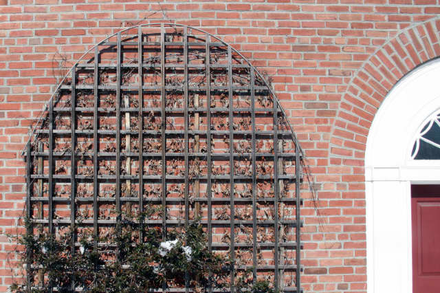 Do you know the location of this trellis in North Salem?