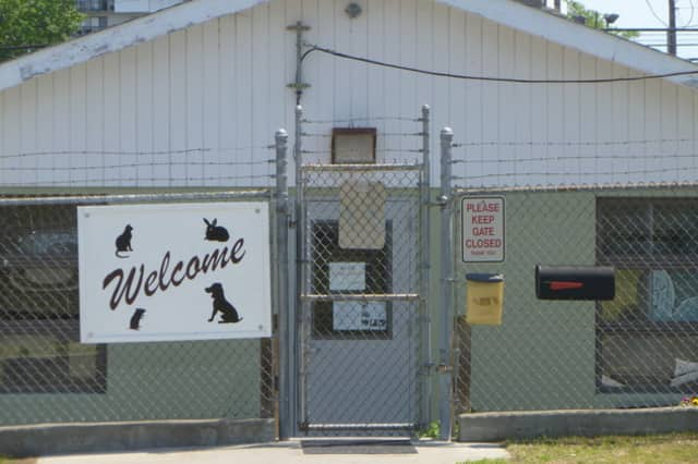 Stamford Helping Paws, a non-profit organization, is now the official fundraising partner for Stamford Animal Control and Care Center. The Center is located on Magee Avenue.