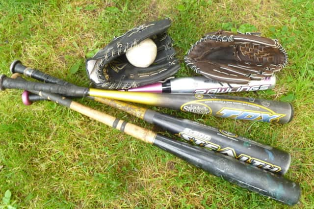 The Dobbs Ferry Recreation Department will hold a winter baseball clinic this month.
