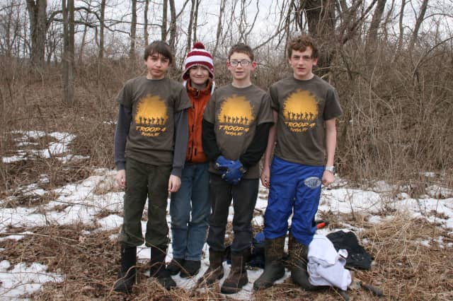 Purdys/Troop 4 has begun a project to clear invasive growth from North Salem's Baxter Preserve. From left, Henry Balch, William O'Leary, Will Isler and Chris James.