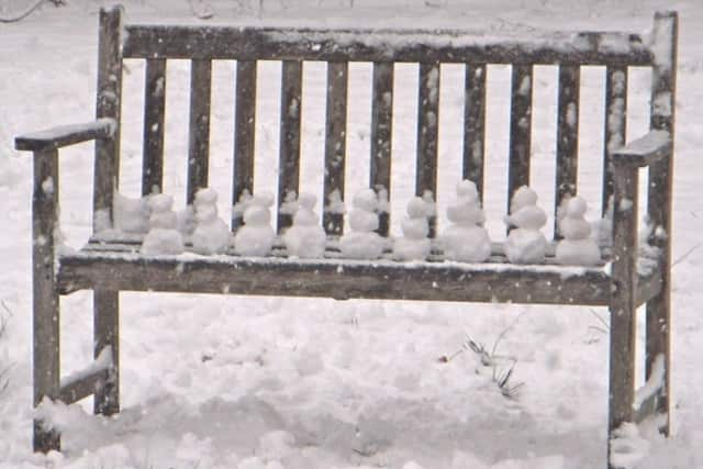 Darien resident Nina Rodriguez, 12, built this row of tiny snowmen with her Aunt Andy during the Feburary storm.