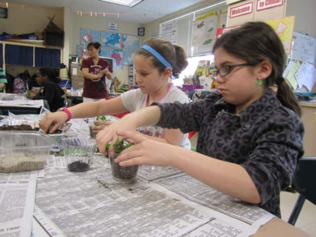 A statewide campaign recently graded all schools in New York.