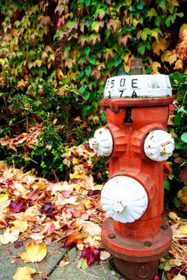 Fire hydrants in Westchester are currently being flushed, which could cause water discoloration for residents in the affected areas.