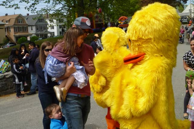 Tarrytown's annual tradition races rubber ducks in Andre Brook on Saturday.