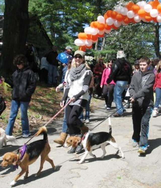 The SPCA of Westchester is set to host the eighth annual Walkathon and Pet Fair Saturday in Yorktown Heights.