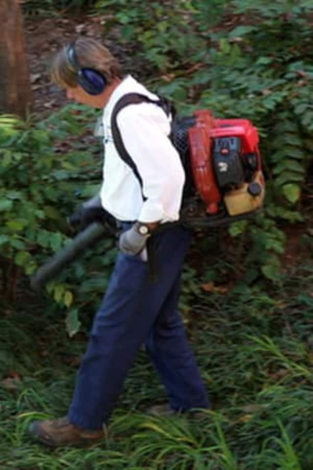 Starting Wednesday Rye residents will be prohibited from using their leaf blowers until Sept. 30.
