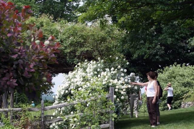 Tour secret gardens in Ridgewood and Glen Rock next month.