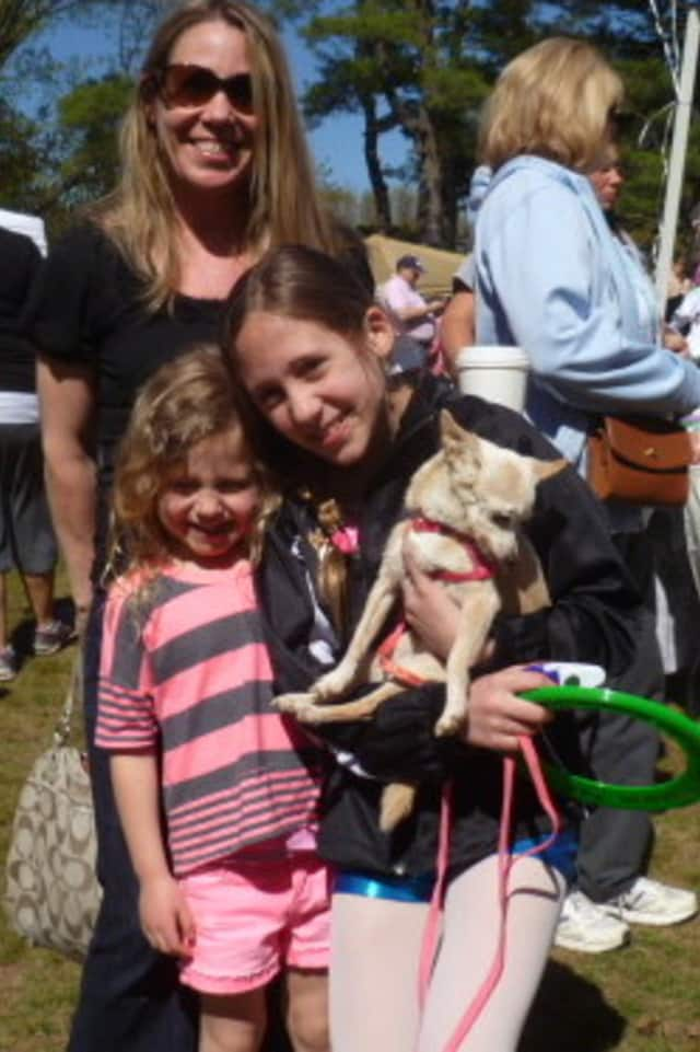 Dianne Alves of Yorktown attended Saturday's SPCA Walkathon and Pet Fair with her daughters, Nyah, 4, (left), Aysia, 10, and their pet Chiuaua, Carona.