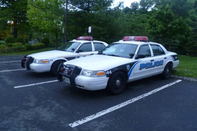 Rye Brook police will be cracking down on drivers not wearing their seat belts.