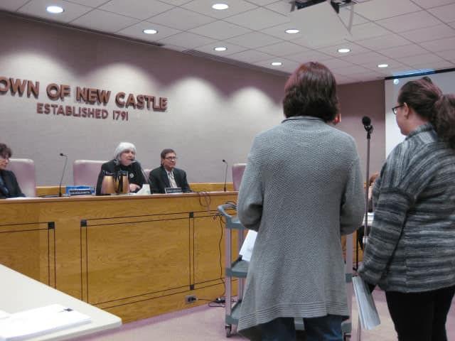 Residents Eileen Gallagher and Paula Gorkin speak Wednesday night to the New Castle Town Board about coyotes in Chappaqua.