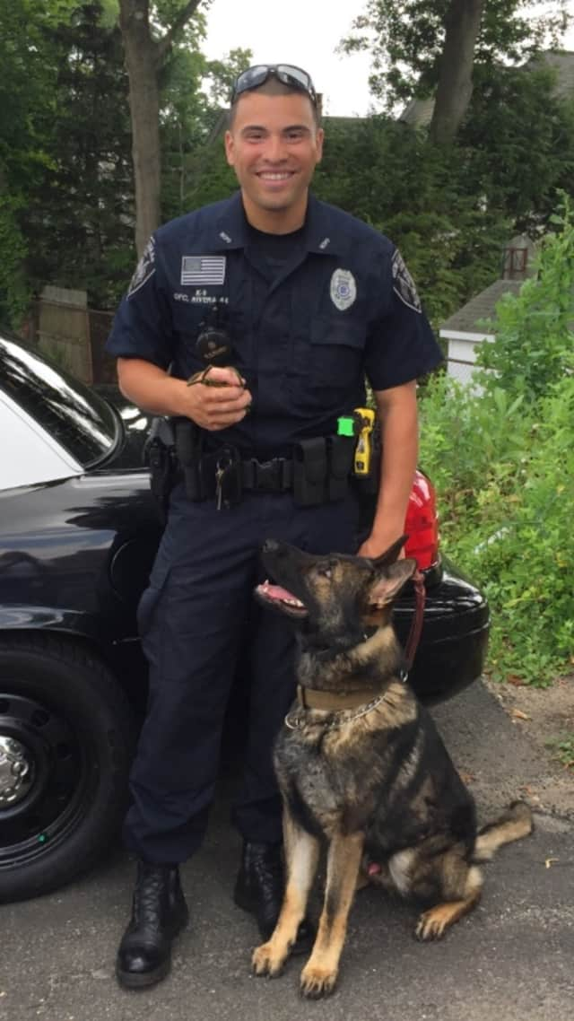 New Canaan police Officer David Rivera, and K-9 Apollo, have worked together on narcotics and missing child cases. The police department is trying to raise $100,000 for a second police dog and its training and equipment.