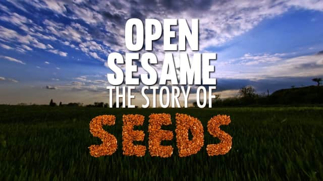 """Filmmaker Sean Kaminsky will be on hand when Fairfield Library screens his film """"Open Sesame: The Story of Seeds"""" April 20."""