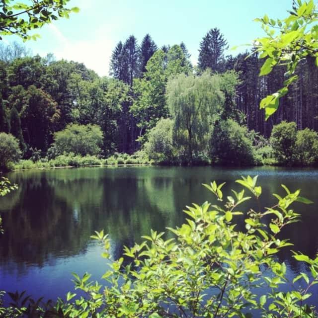 Lasdon Park, Arboretum & Veterans' Memorial is a popular spot for Somers residents.