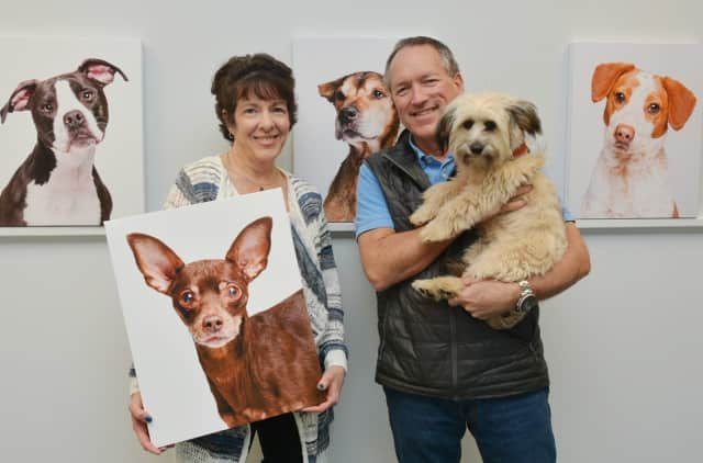 Lynne Gomez, executive assistant to the CEO at Bankwell and planner of the Bankwell Pet Adoption Project, with photographer Mike Bagley.