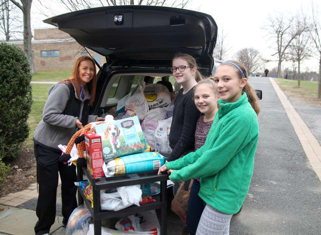 Adviser Tina Nicodemo and students Kelly Ryan (Grade 8), Autumn Verna (Grade 6) and her sister Maeve (Grade 8) load Nicodemo's car with donations from Westlake Middle School's pet supply drive.
