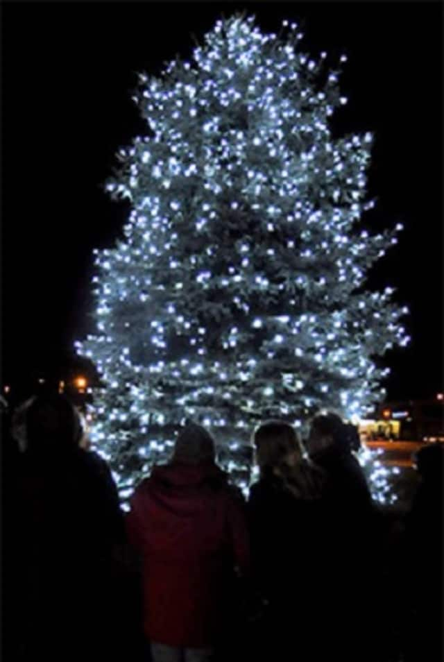 VNSCT's annual Hospice Tree of Life lighting ceremony will take place Thursday.