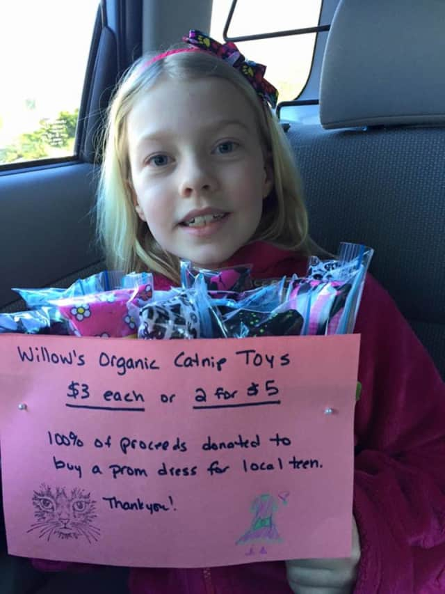 Willow Phelps, 8, of Ringwood, raising support for one of her fundraisers.