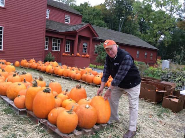 Wilton Kiwanis member Dave Forslund tends to his pumpkin patch set up at the Wilton Historical Society. Sales continue through Halloween.