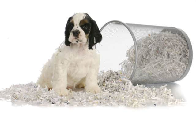 Fort Lee residents can attend a paper shredding event on Saturday, April 9.