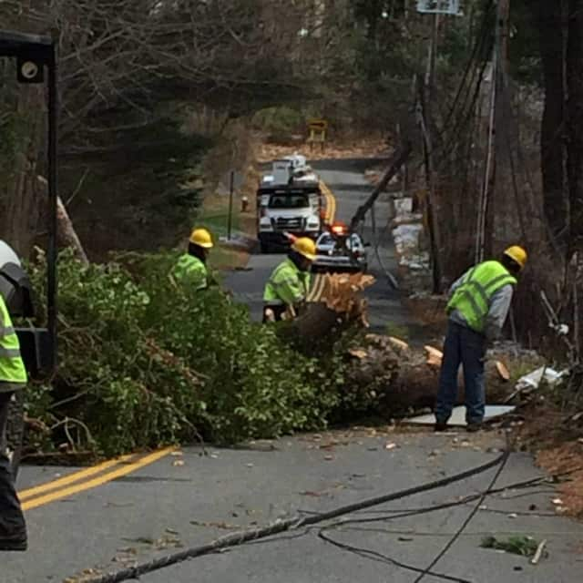 Orange and Rockland crews are repairing the damage from a downed tree at Summit Park Rd.