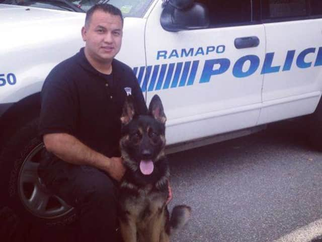 "Police dogs and their handlers from Ramapo and other local police agencies participated in a training event Thursday by searching the county jail for drugs and other contraband. Ramapo police Officer A. Sanchez poses with K-9 ""Rookie."""