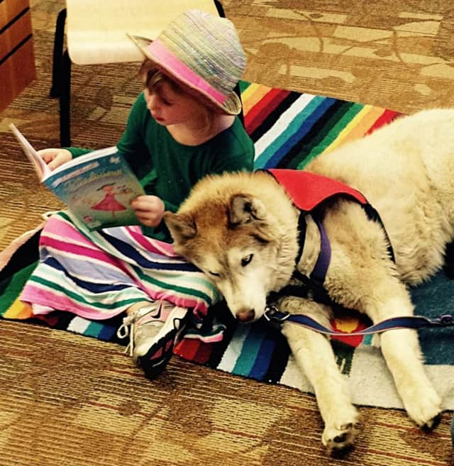 """Reading dogs"" are a growing trend, and Teaneck Public Library is having sessions too. Sign up for Monday, March 7."