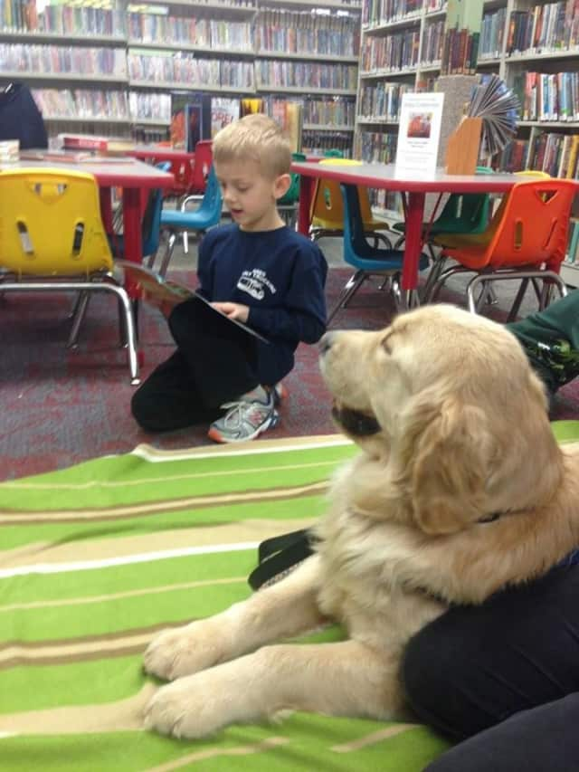 "The Bloomingdale library has encouraged reading for 90 years now -- and the efforts now include the ""Paws to Read"" program, featuring Thatcher. Come celebrate in May, with two events."