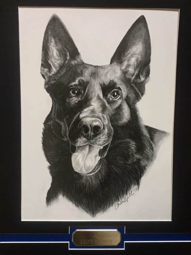 After Newtown's previous K-9 Saint Michael (pictured) passed away in April, the Newtown Kennel Club will donate $15,000 to cover purchase and training of a new police dog.